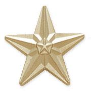 """3/4"""" Star Pins"""